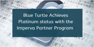 blue turtle it software